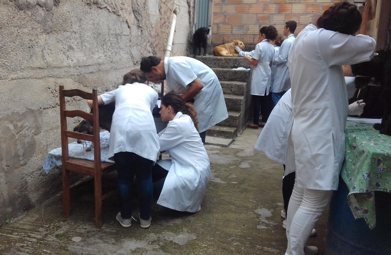 Novo projeto de atendimento veterinário foi iniciado no dia 10 (Créditos: Divulgação)